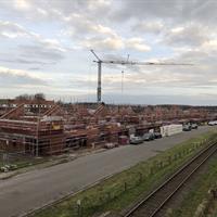 Werf Krekelmuyter - Groene Briel januari 2020